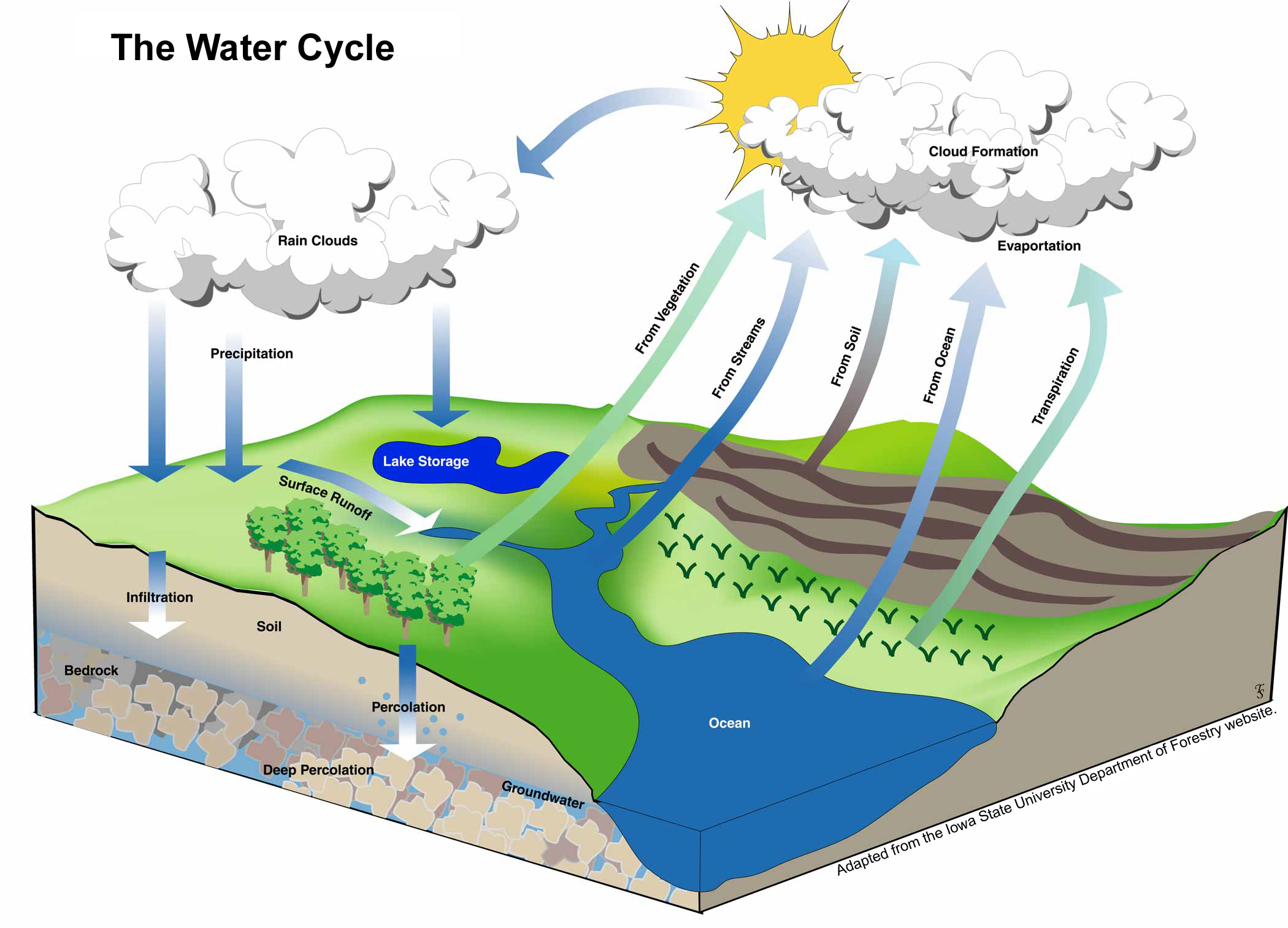 water cycle related keywords  amp  suggestions   water cycle long tail    water cycle related keywords  amp  suggestions   water cycle long tail keywords